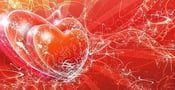 Study Shows Couples' Hearts Beat In Sync