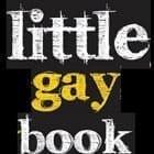 Little Gay Book