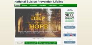 Screenshot of NSPL's homepage