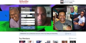 Screenshot of HeMeetsHim homepage