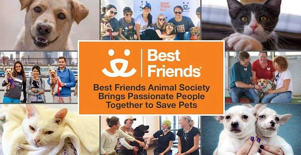 Best Friends Animal Society Brings Passionate People Together to Save Pets