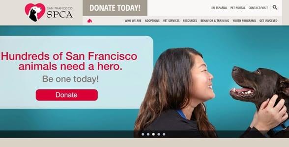Screenshot of SF SPCA's homepage