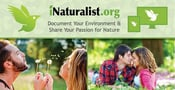 Nature Lovers Come Together on iNaturalist.org to Document Their Environment and Share Their Passion