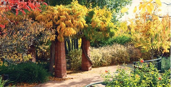 Photo of Red Butte Garden in the fall