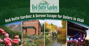 Since 1985, Red Butte Garden Has Offered a Serene Escape for Daters in Utah
