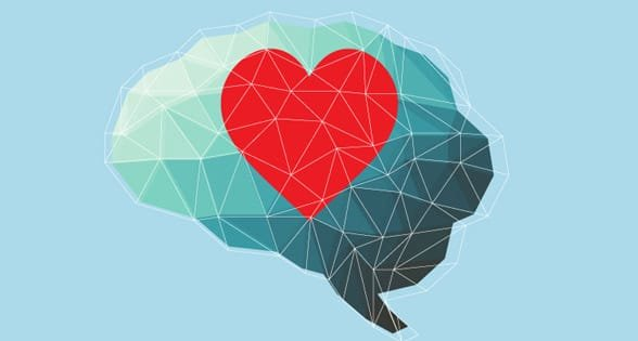Photo of a heart and brain