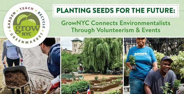 Grownyc Connects Environmentalists Through Volunteerism And Events