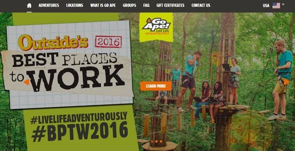 Screenshot of Go Ape's homepage