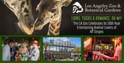Lions, Tigers & Romance, Oh My! The LA Zoo Celebrates Its 50th Year Entertaining Animal Lovers of All Stripes