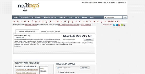Screenshot of NetLingo's homepage
