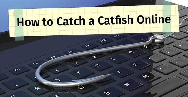 How To Catch A Catfish Online