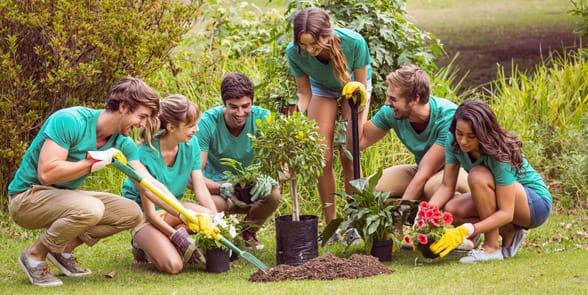 Photo of people volunteering