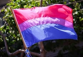 Photo of the bisexual pride flag