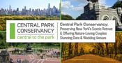 Central Park Conservancy — Preserving New York's Scenic Retreat & Offering Nature-Loving Couples Stunning Date & Wedding Venues