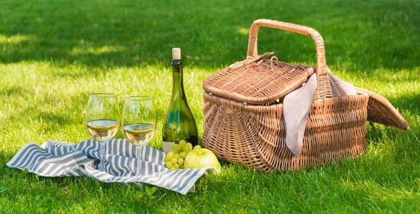 Photo of an outdoor picnic