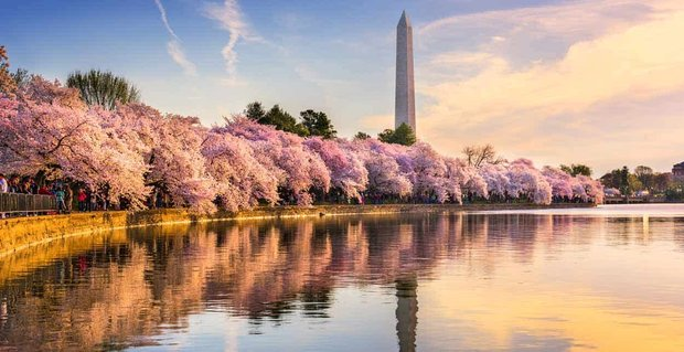 9 Ways to Meet Singles in Washington, DC (Dating Guide)