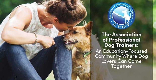 The Association Of Professional Dog Trainers An Educational Community For Dog Lovers