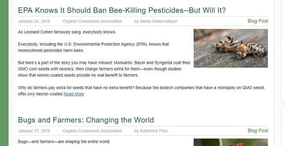 Screenshot of the OCA's blog