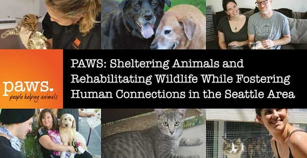 Paws Shelters Animals While Fostering Human Connections