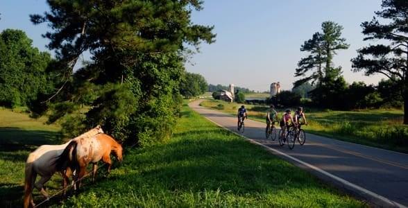 Photo of bikers in Chapel Hill