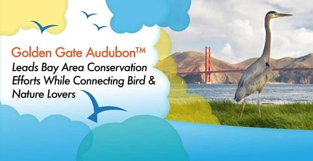 Golden Gate Audubon™ Leads Bay Area Conservation Efforts While Connecting Bird & Nature Lovers