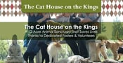 The Cat House on the Kings is a 12-Acre Animal Sanctuary That Saves Lives Thanks to Dedicated Fosters & Volunteers