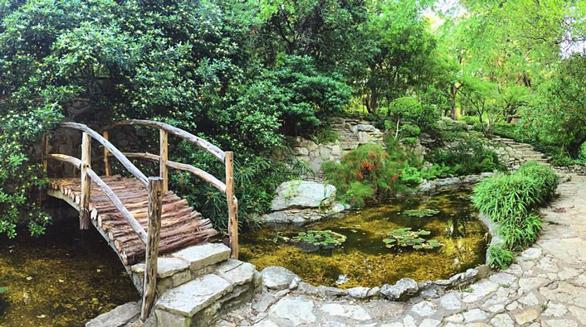Photo of the Isamu Taniguchi Japanese Garden