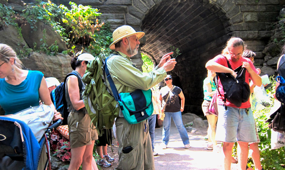 Photo of Wildman Steve Brill conducting a tour