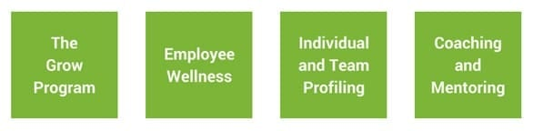 Screenshot of Paula Quinsee corporate workshop offerings