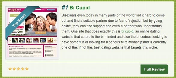 Screenshot of Top10BiDatingSites.com quick review