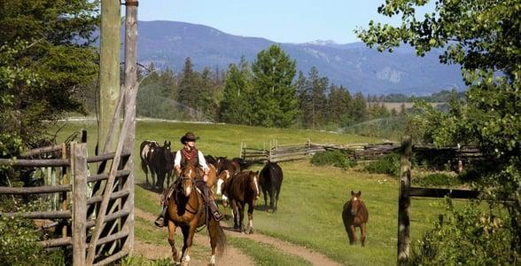 Photo of horseback riding at the Echo Valley Ranch and Spa