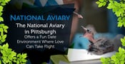 The National Aviary in Pittsburgh Offers a Fun Date Environment Where Love Can Take Flight