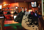 Shooters Bar & Billiards