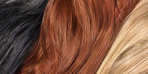 Photo of different hair colors