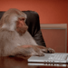 monkeygirl
