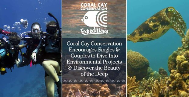Coral Cay Conservation Encourages Singles And Couples To Dive Into Environmental Projects