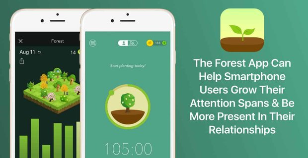 Forest App Helps People Be Present In Relationships