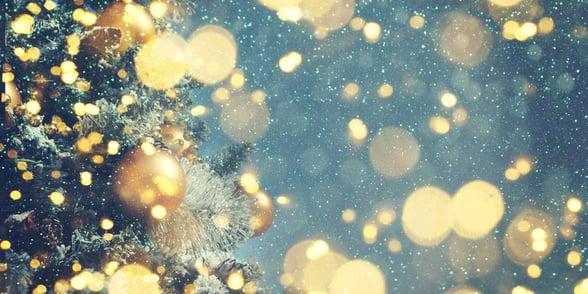 Photo of Christmas tree, lights, and snow