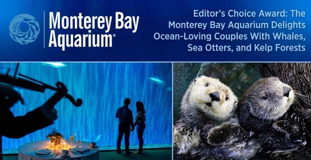 Editor's Choice Award: The Monterey Bay Aquarium Delights Ocean-Loving Couples With Whales, Sea Otters, and Kelp Forests