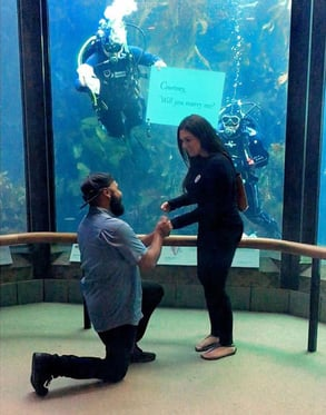 Photo of a proposal at Monterey Bay Aquarium