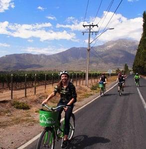 Photo of La Bicicleta Verde