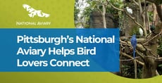 Pittsburgh's National Aviary Offers Bird Lovers a Unique Dating Spot