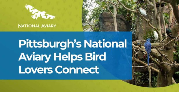 Pittsburghs National Aviary Helps Bird Lovers Connect