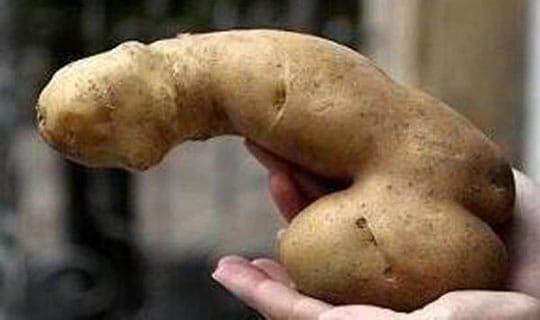 Potato-rection