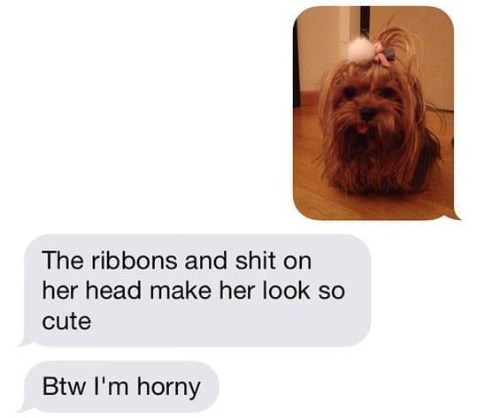 9. Dog Person