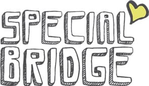 Photo of the Special Bridge logo