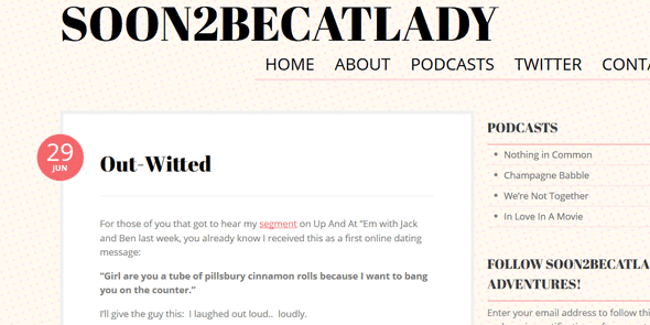 Screenshot of a Soon2BeCatLady blog post