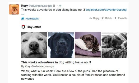 Screenshot of a TinyLetter Twitter post