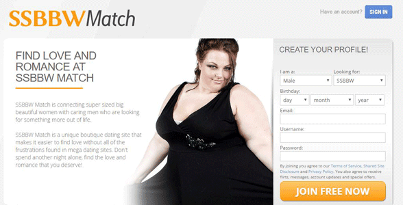 Screenshot of the SSBBW Match homepage