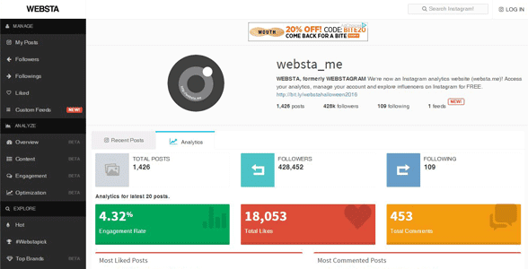 Screenshot of WEBSTA's Instagram profile analysis